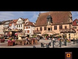 Viager occupé - Molsheim