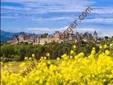 Vente à terme libre - Carcassonne