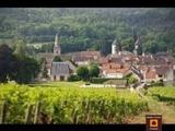 Viager occupé - Savigny-lès-Beaune