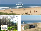Viager libre - Tarnos