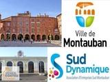 Viager occupé - Montauban