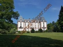 Vente a terme libre - Saint-Die-des-Vosges