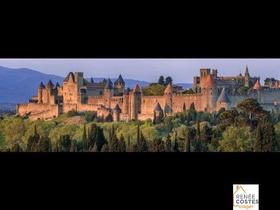 Viager occupé - Carcassonne