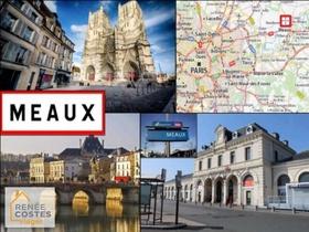 Viager occupé - Nanteuil-lès-Meaux